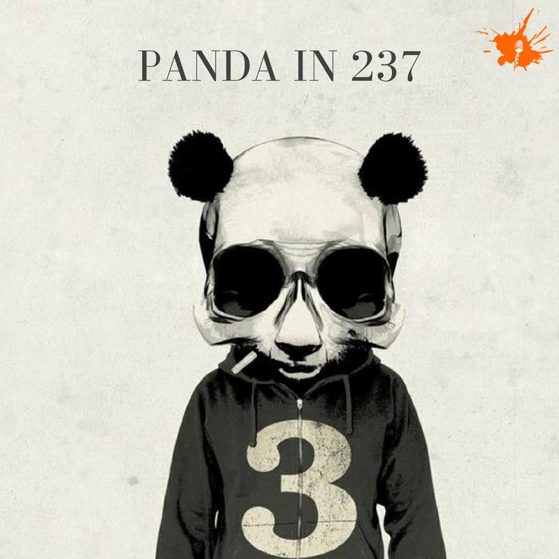Panda in 237